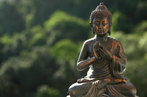 little_buddha-500x333